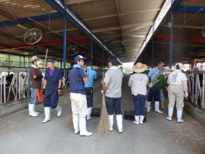 酪農就業体験